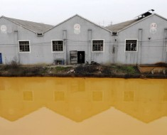 Water pollution is a growing problem, as evidenced by this river in Jiaxing, Zhejiang.