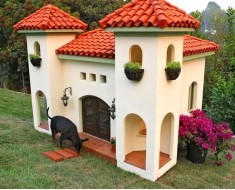 Celebrity-dog-house Featured Image