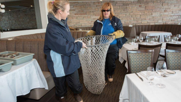 Sea Lion Gets Table At San Diego Restaurant